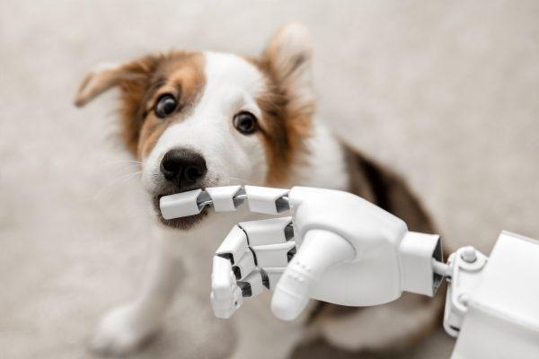 3D printing animal parts